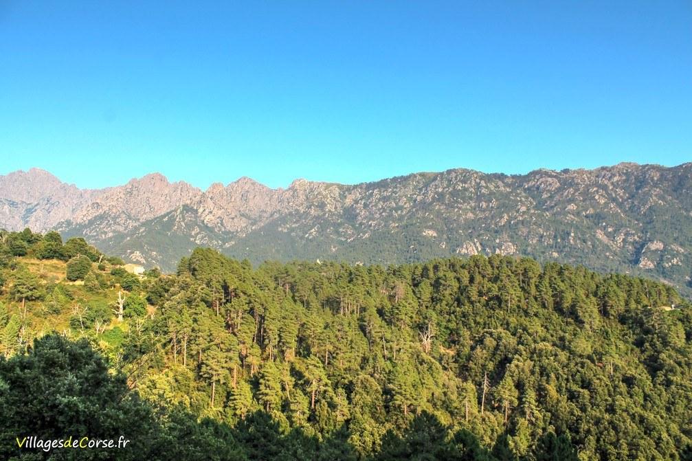 Montagne - Pastricciola