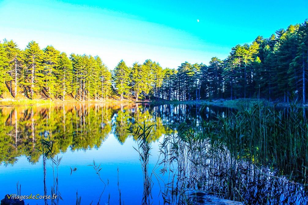 Lac - Creno - Orto