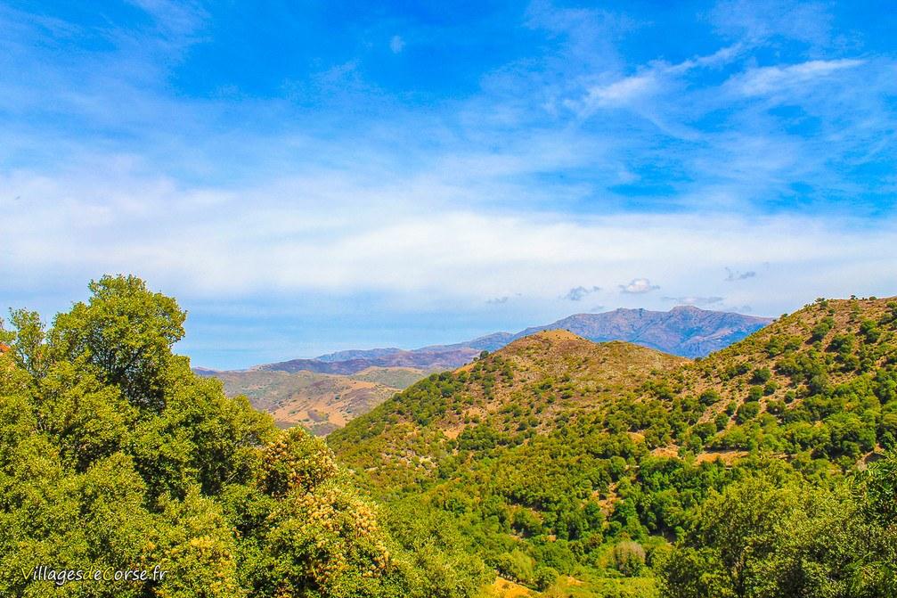 Montagne - Castifao