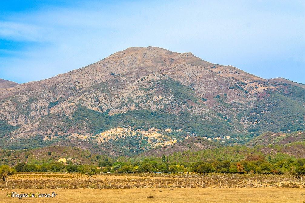 Montagne - Moltifao