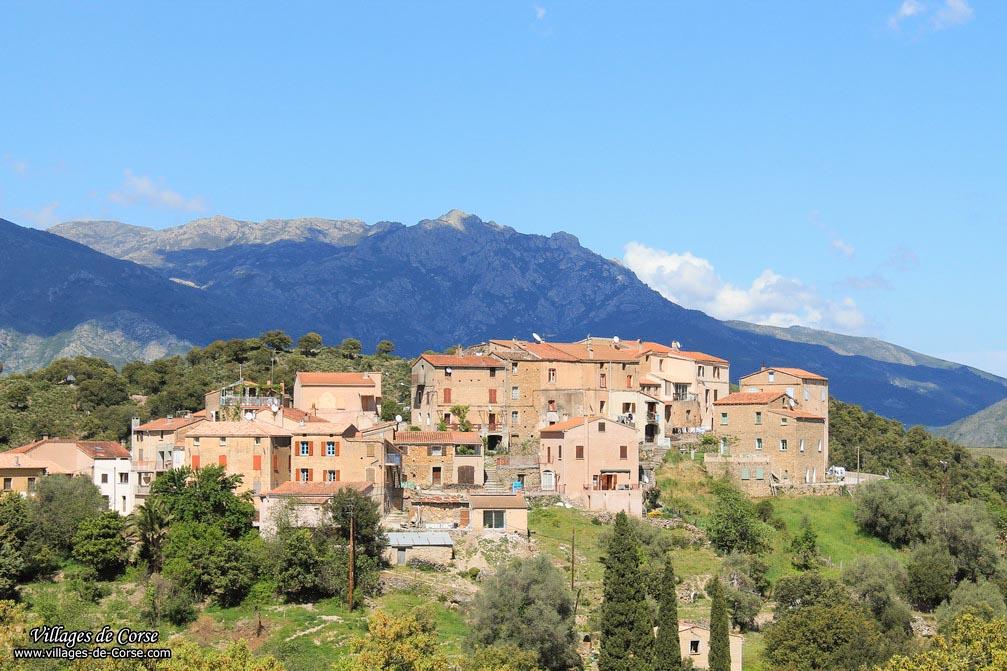 Village - Piedigriggio