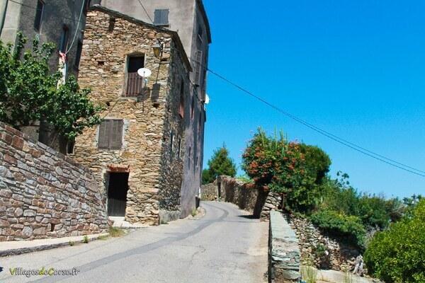 Rue - Furiani