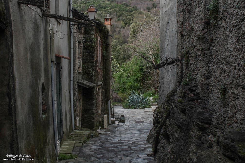 Gasse - Lucciana