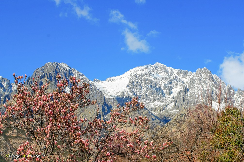 Crête - Gialgarello - Bocognano
