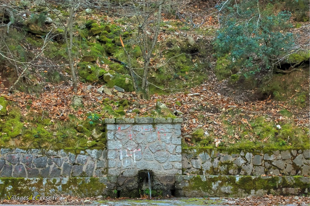 Fontaine - Bocognano