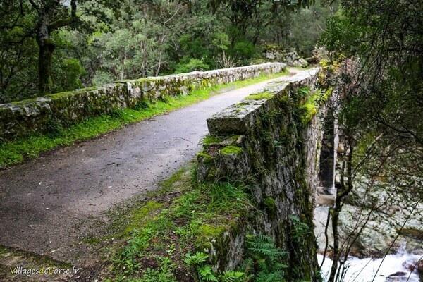 Pont - Pino - Bocognano