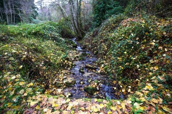 Ruisseau - Landagliaccio - Bocognano