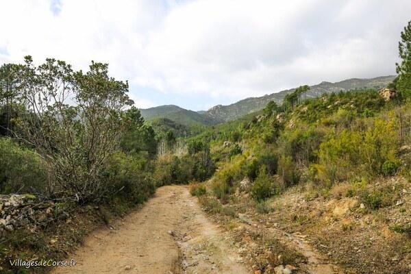 Sentier - Bocognano