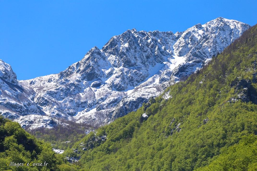 Mont - Punta Alla Vetta - Bocognano