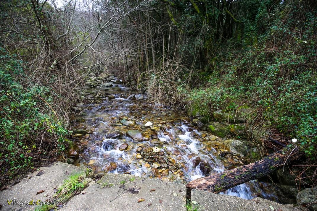 Ruisseau - Bronco - Bocognano