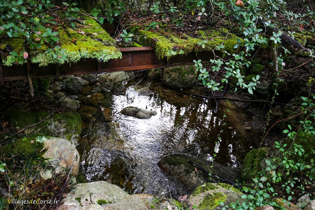 Ruisseau - Marchisana - Bocognano