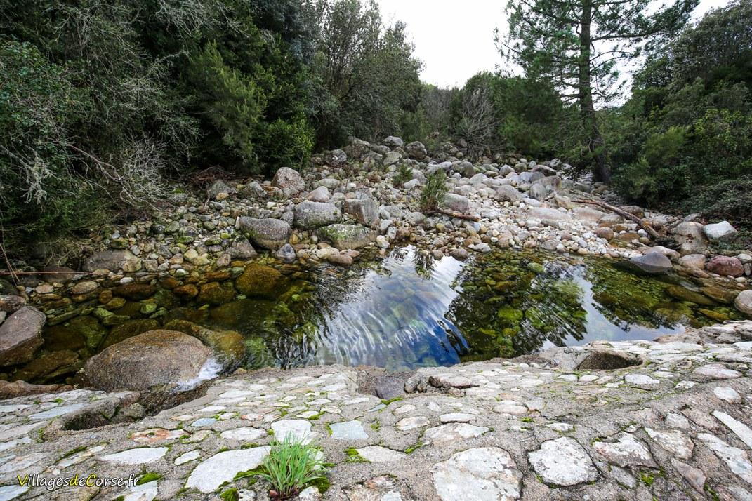 Ruisseau - Pentica - Bocognano