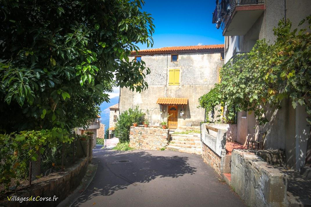 Village - Cuttoli Corticchiato