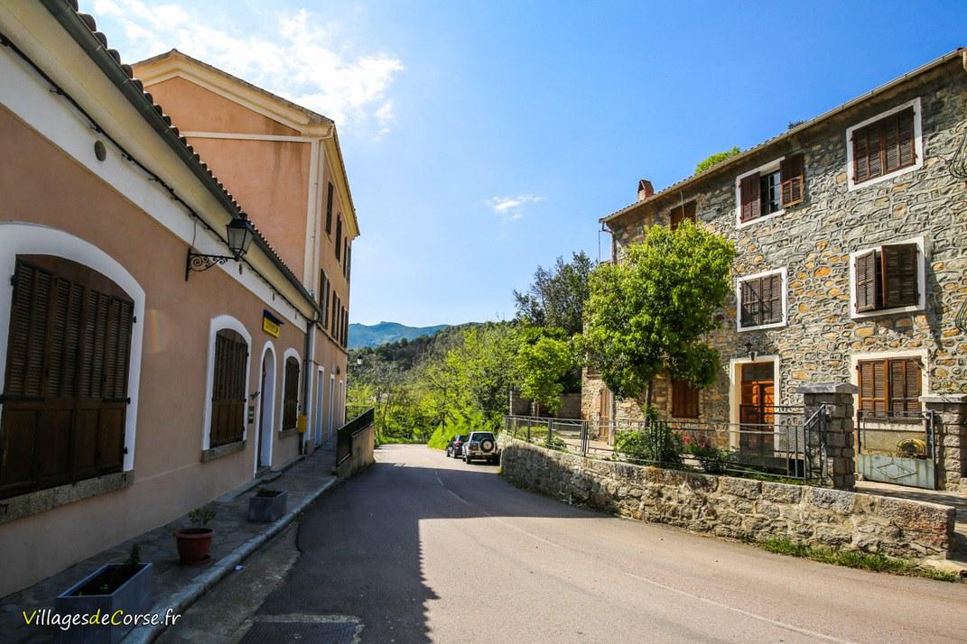 Rue - Sarrola Carcopino
