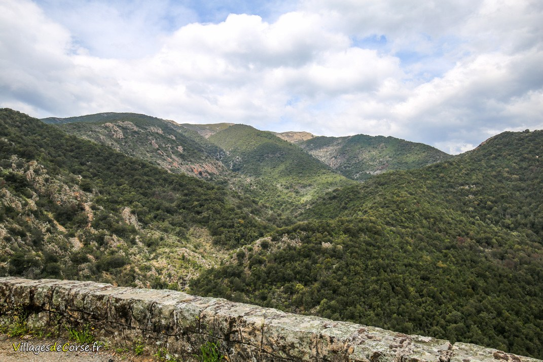 Montagne - Tavaco