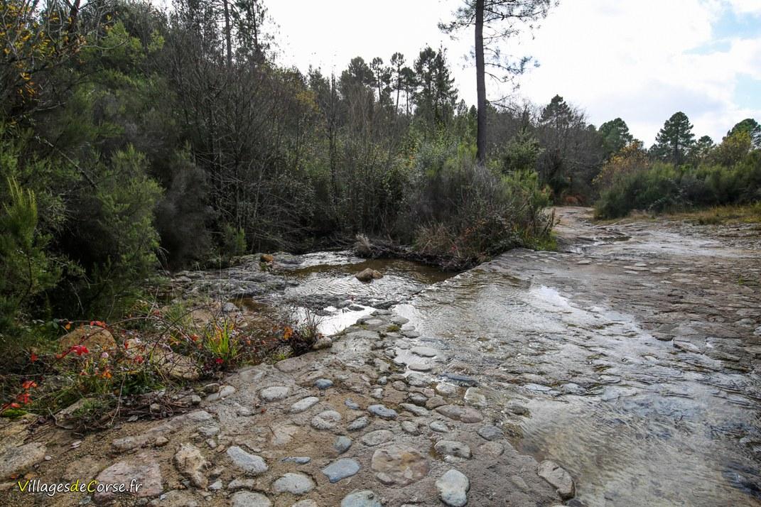 Ruisseau - Erbajolo - Tavera