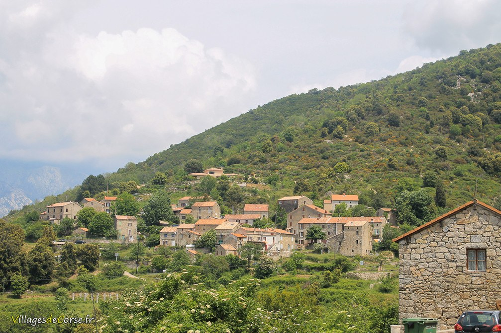 Village - Tavera