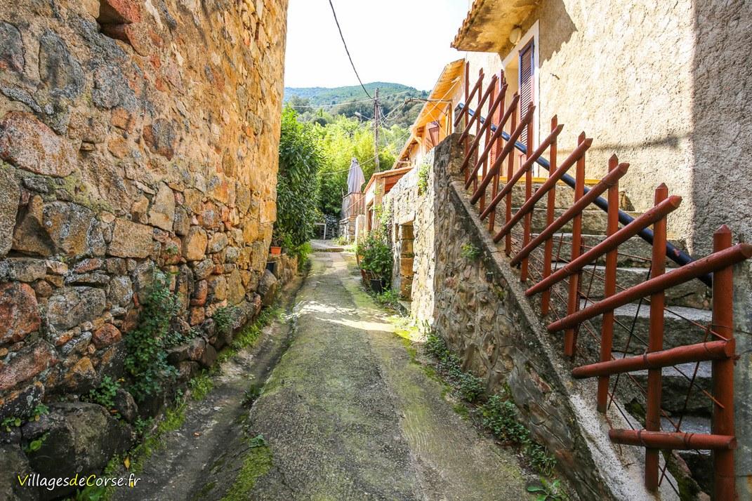 Ruelle - Valle di Mezzana