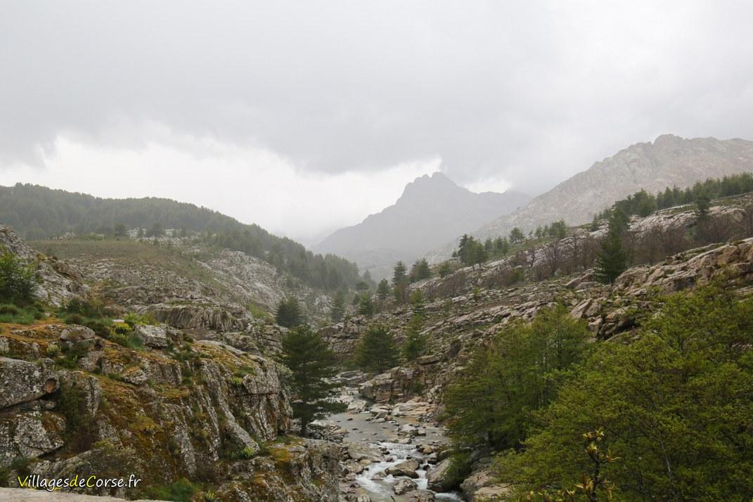 Fleuve - Golo - Albertacce