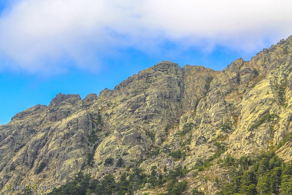 Montagne - Albertacce