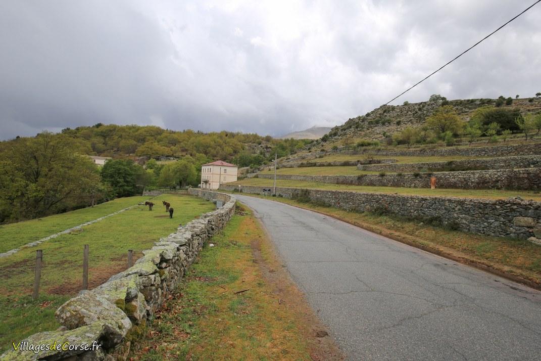 Route - Calacuccia