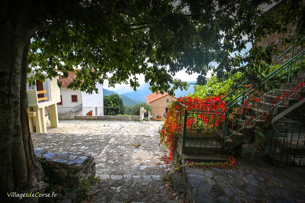 Village - Tox