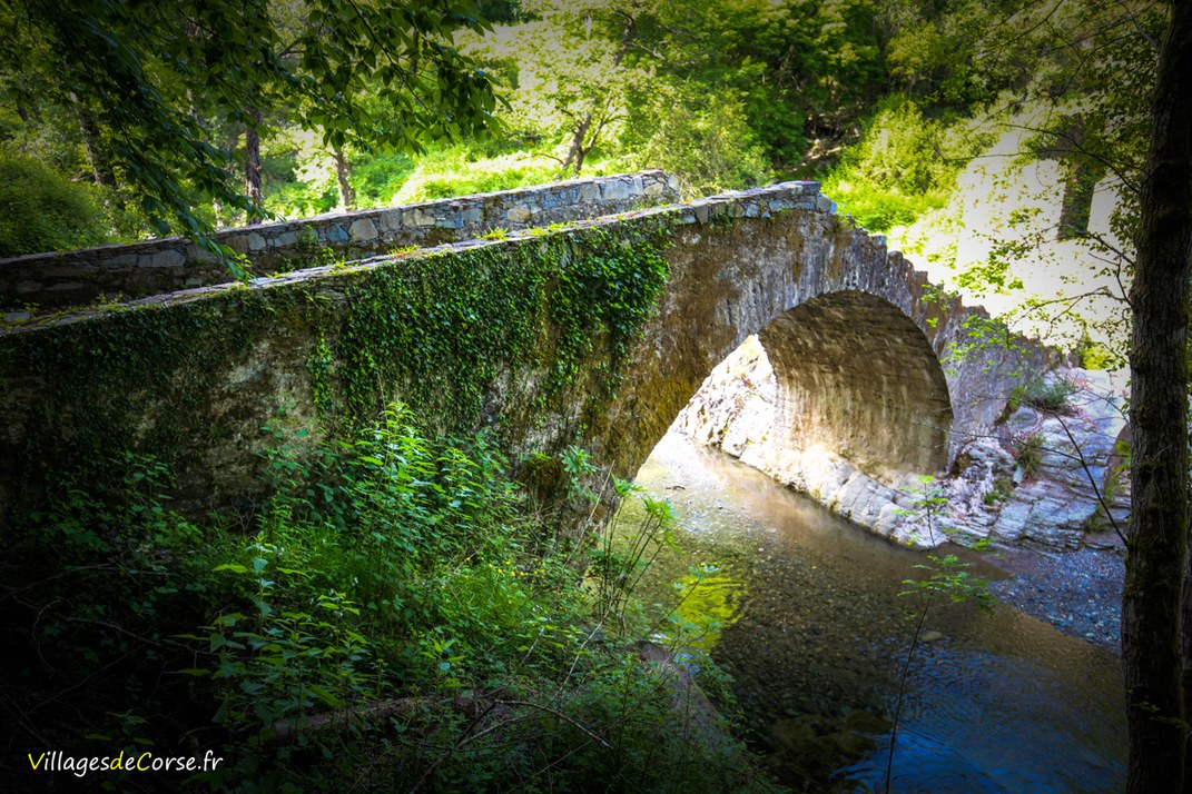 Pont Génois - Alisu - Zalana
