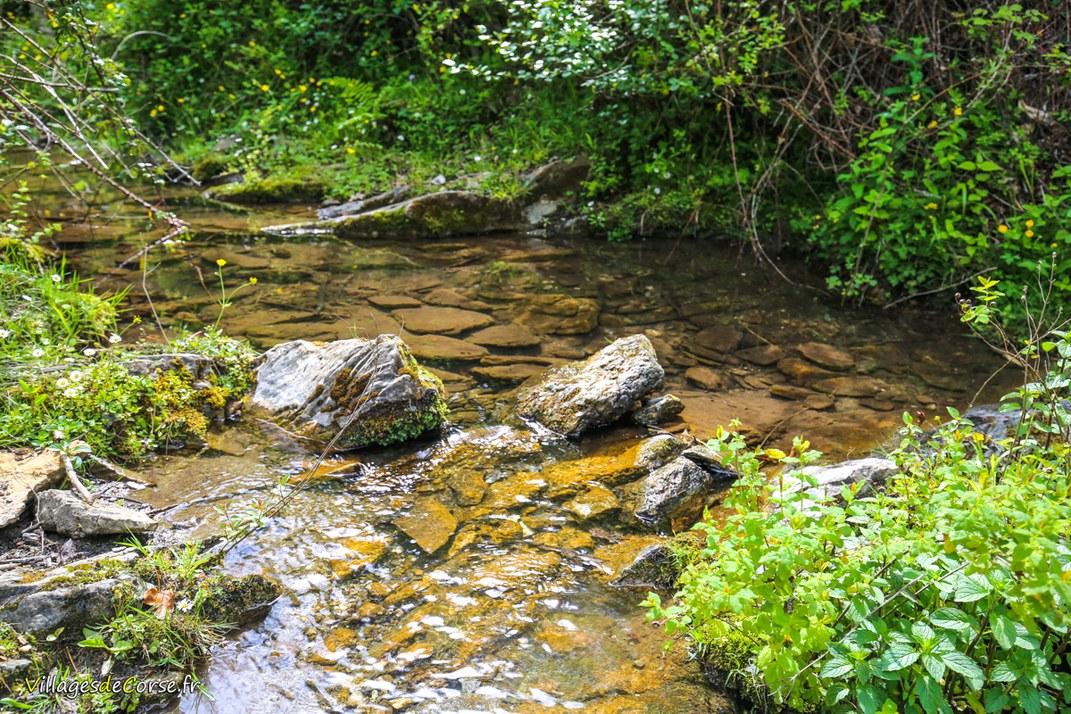 Ruisseau - Roticelle - Zalana