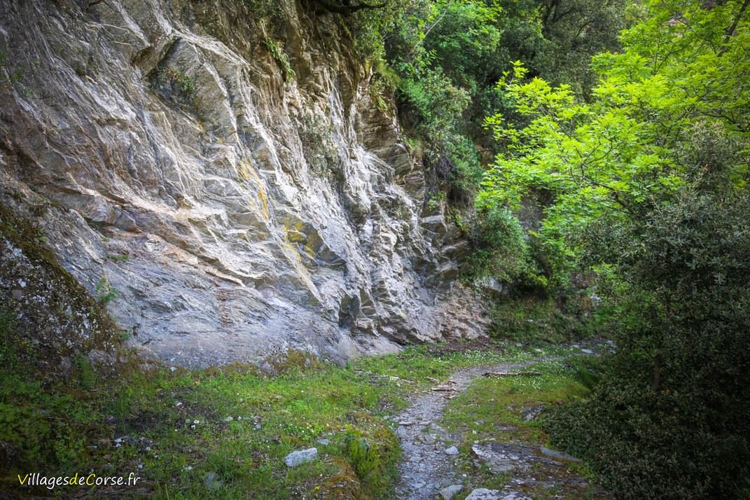 Sentier - Zalana