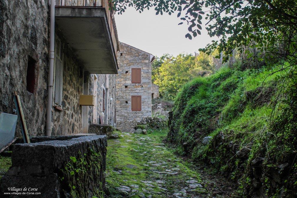 Sentier pavé - Bastelica