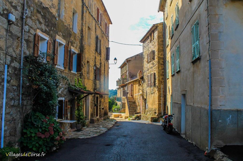 Rue - Eccica Suarella