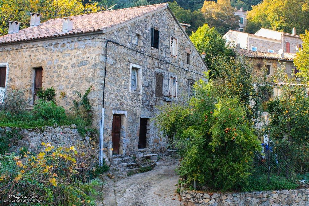 Maison en pierres - Albitreccia