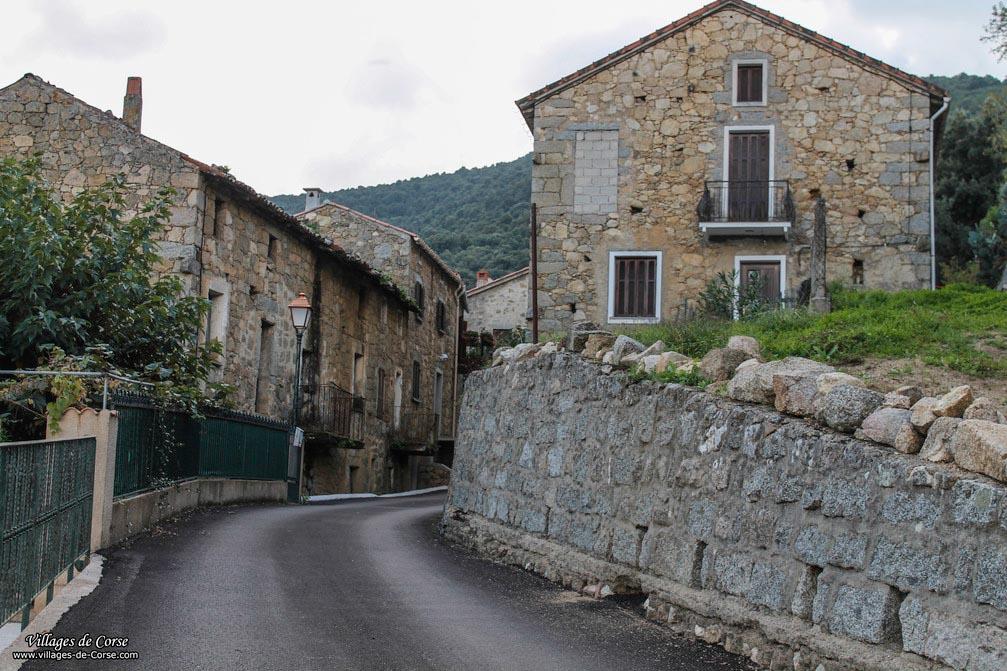 Ruelle - Albitreccia