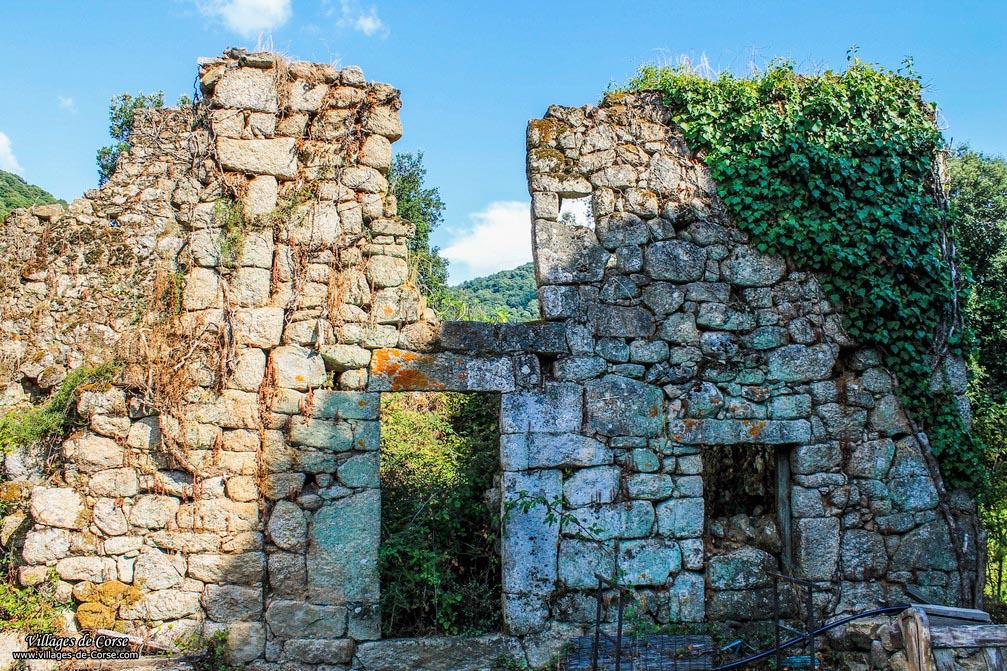 Ruine - Cardo Torgia