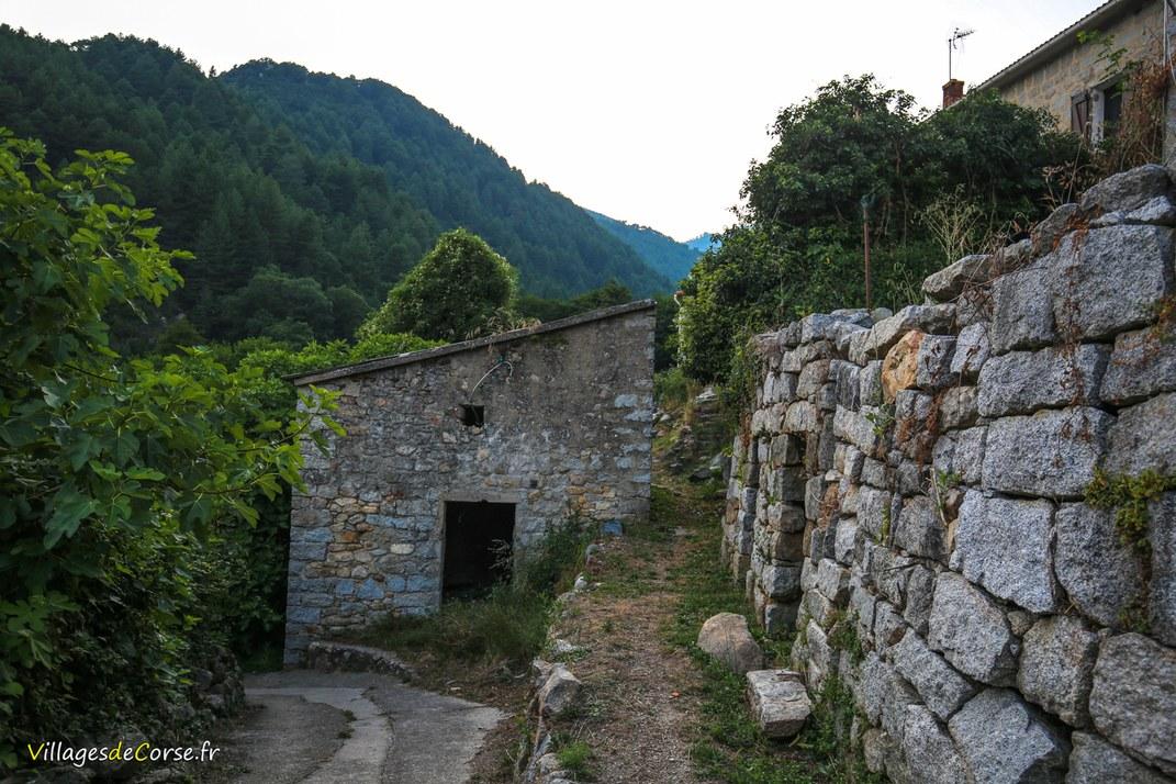 Trail - Ciamannacce