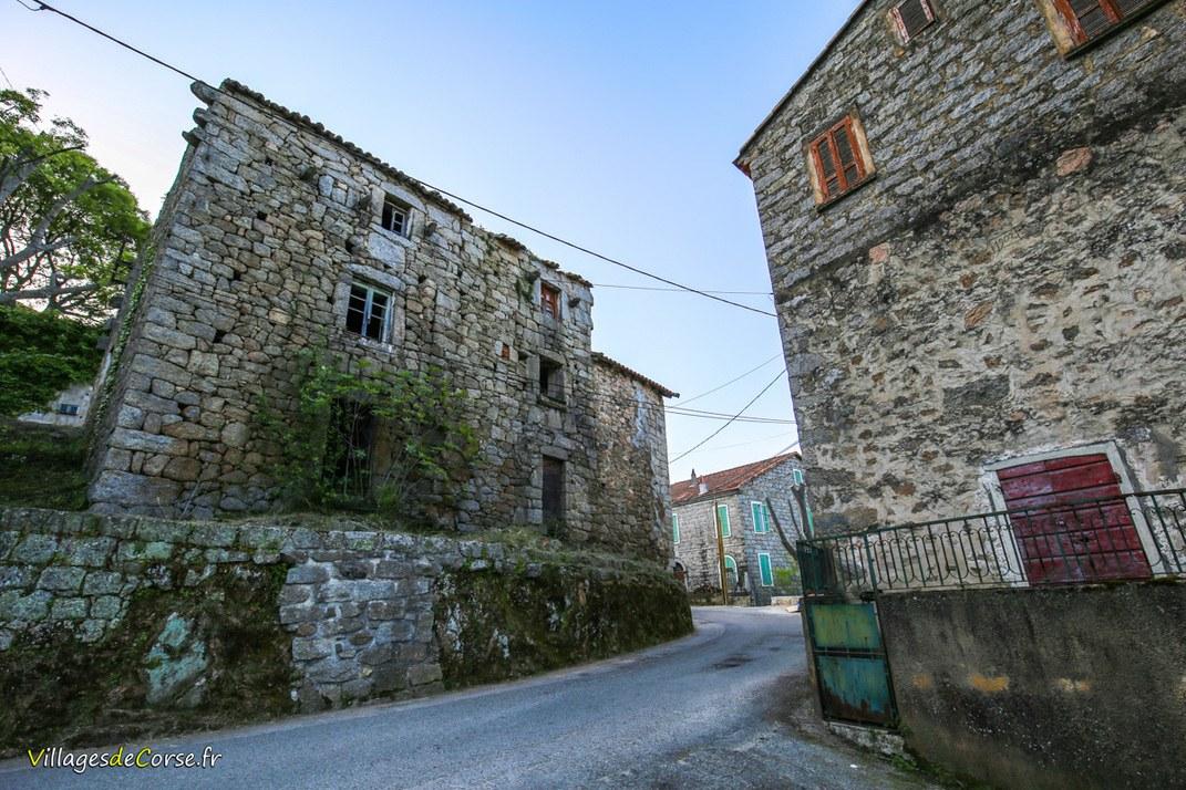 Vieille Maison - Cognocoli Monticchi