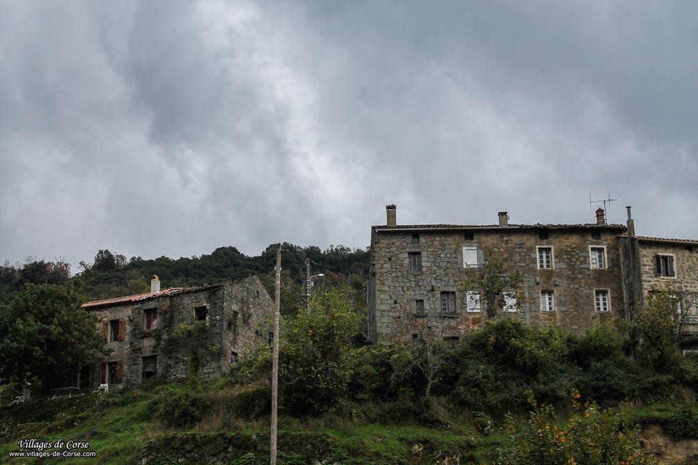Vieille Maison - Frasseto