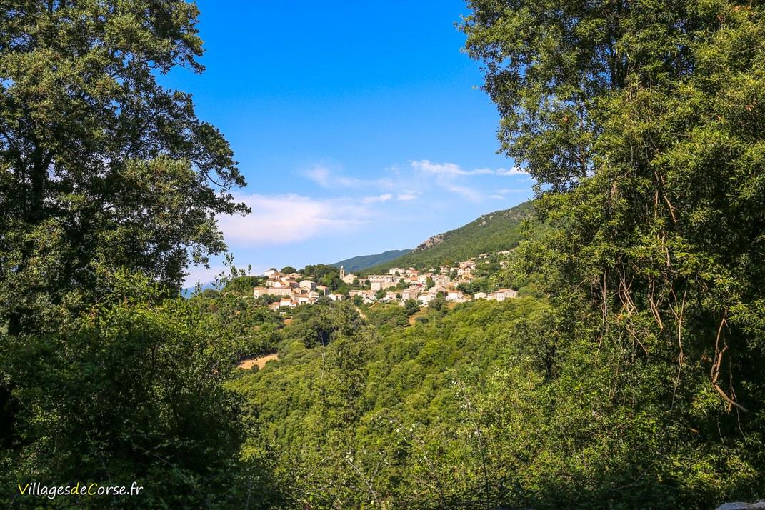 Village - Olivese
