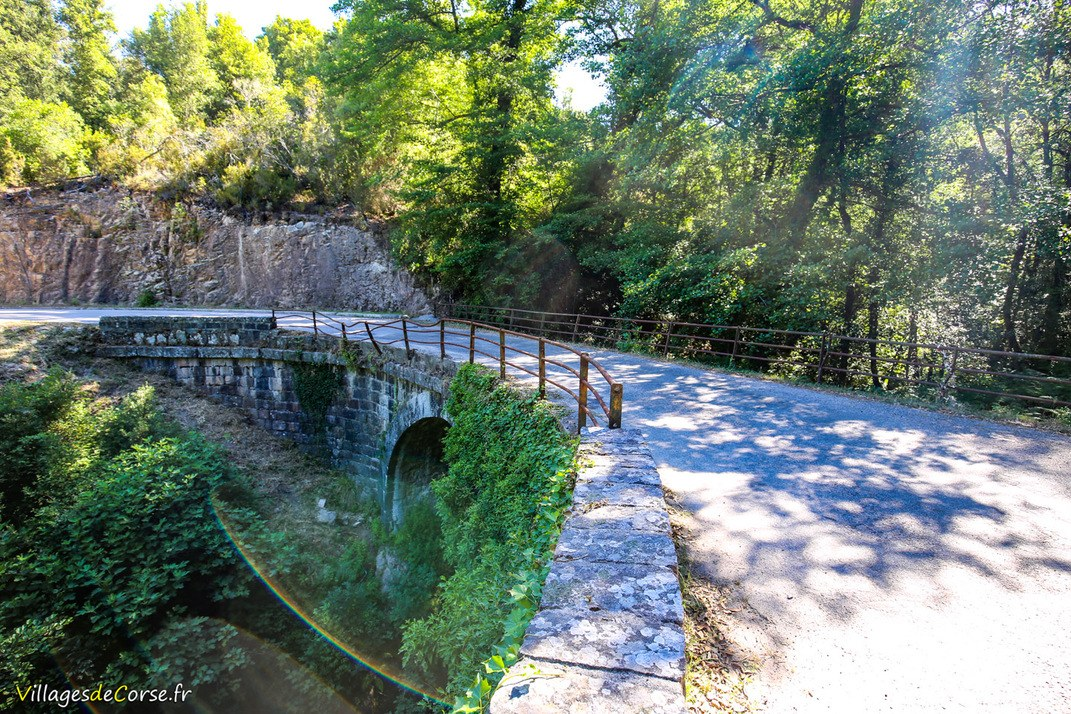 Pont - Olivese