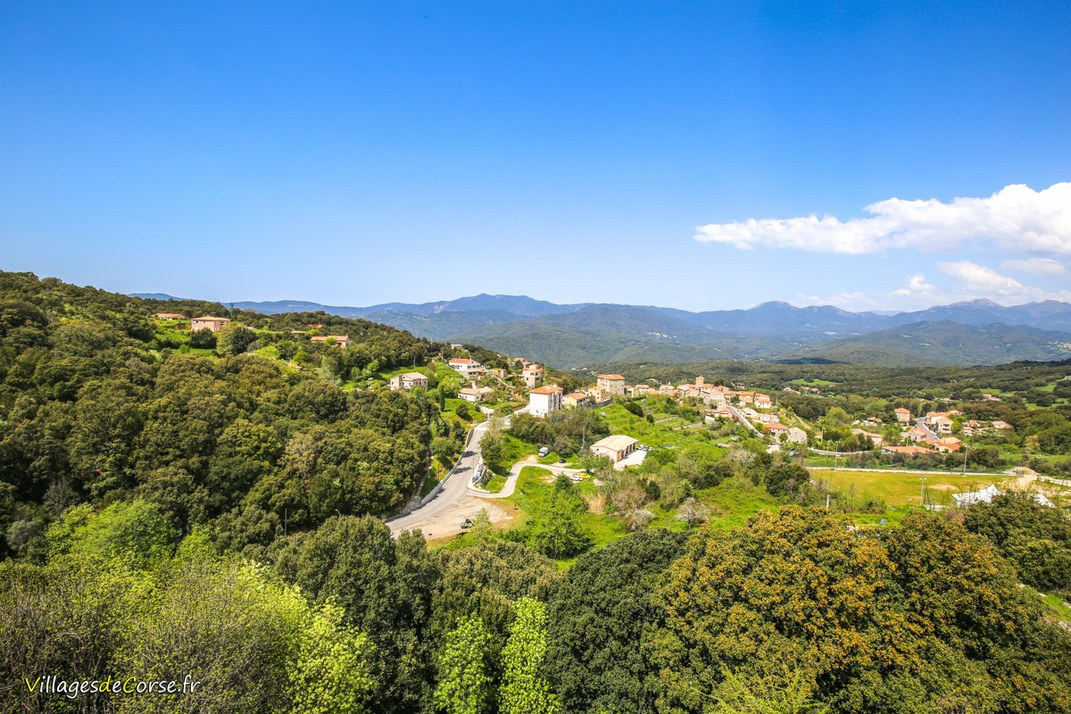 Village - Petreto Bicchisano