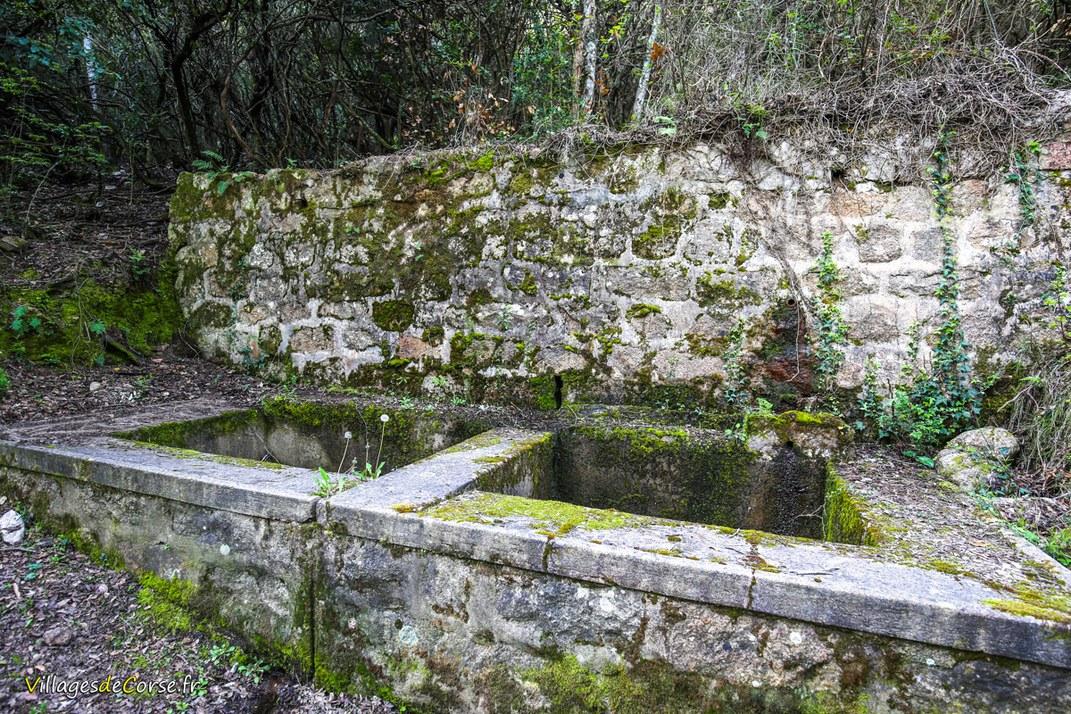 Wasch - Pietrosella