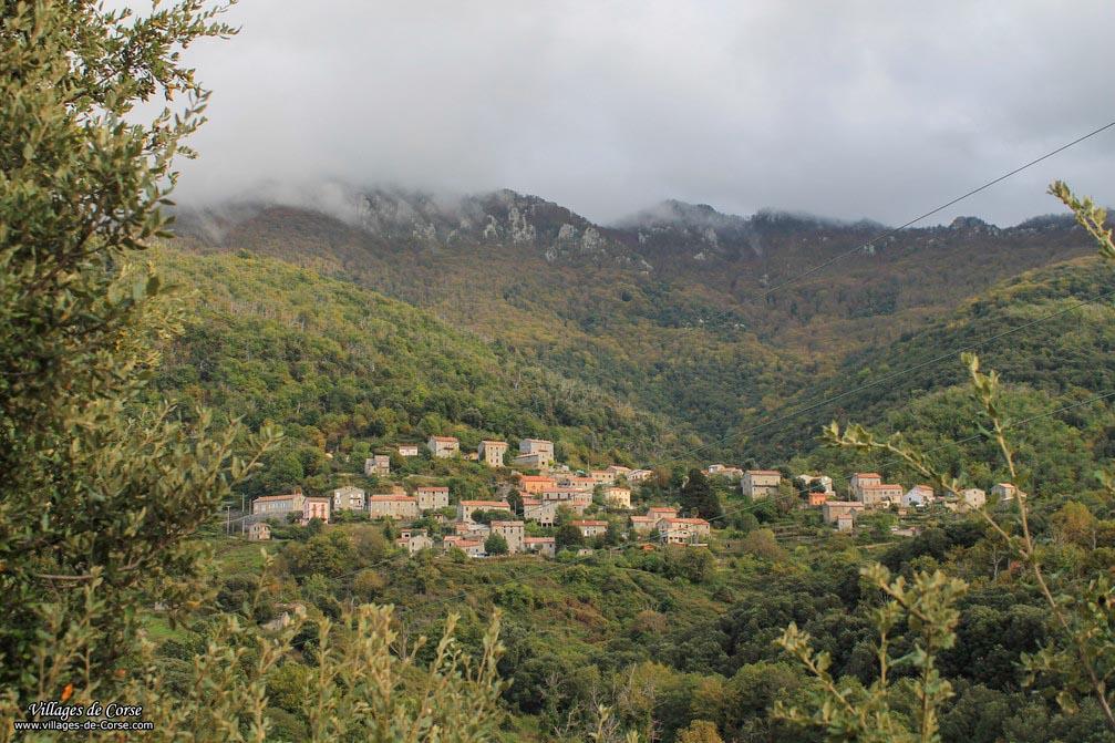 Village - Zicavo