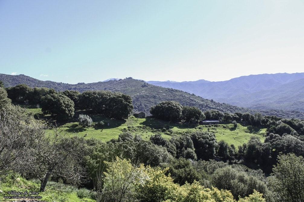 Montagne - Zigliara