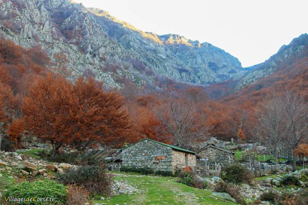Bergeries de Capiaghja à Bocognano