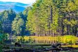 Lac de Creno cochon
