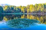 Nenuphars lac de Creno