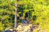 Sentier randonnee lac de Creno orto soccia