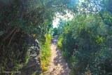 Sentier des cretes ajaccio 2