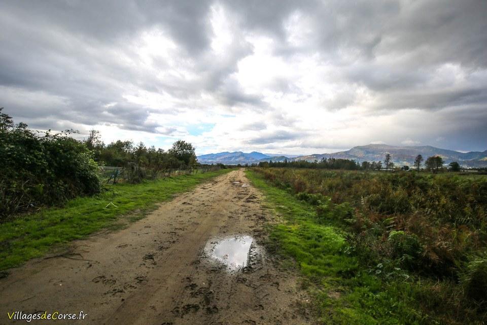 Sentier randonnee venzolasca