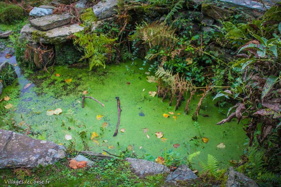 Ancien reseau eau irrigation rutali Trà aghje è Pagliaghji